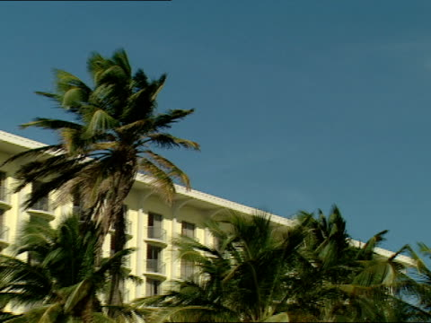 palm trees surround a resort on a caribbean beach - strohdach stock-videos und b-roll-filmmaterial