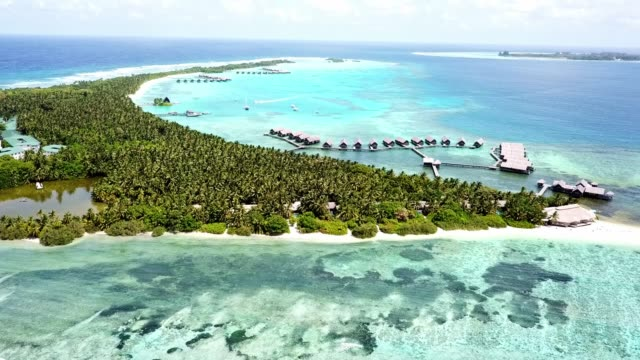 vídeos de stock e filmes b-roll de palm trees, white sandy beaches and crystal clear water - the maldives - ilha