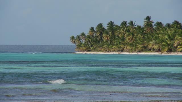 WS, Palm tress on tip of land in Caribbean Sea, Saona Island, Dominican Republic