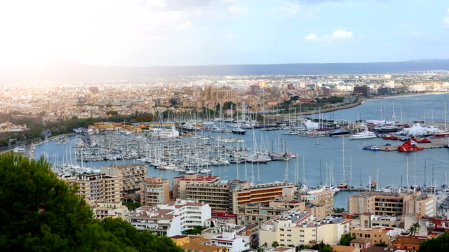 palma de mallorca with sun - balearic islands stock videos and b-roll footage