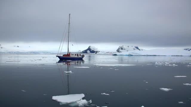 Palmer Archipelago, Antarctica