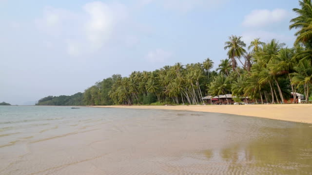 palmtrees at sandy beach - gulf of thailand stock videos & royalty-free footage