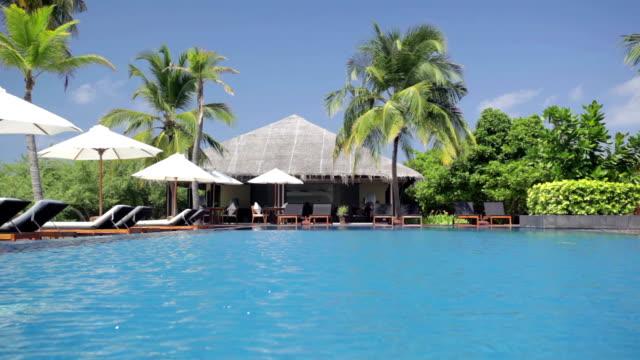palmtrees shaking in wind at island pool