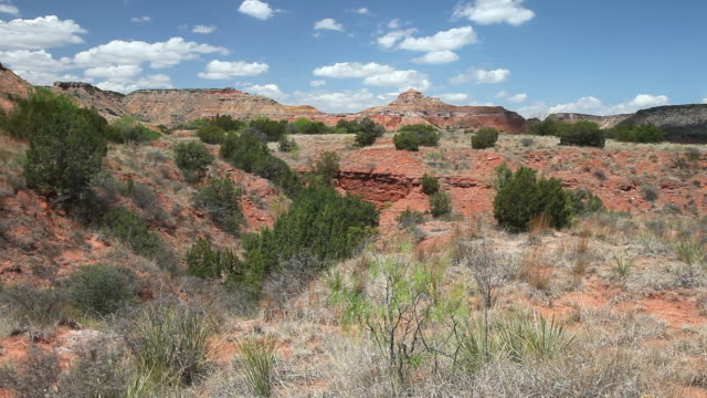 palo duro canyon - lockdown stock videos & royalty-free footage
