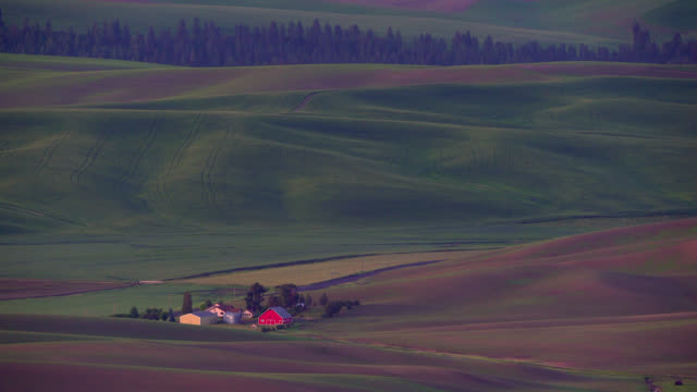 palouse fields and red barn - palouse stock videos & royalty-free footage