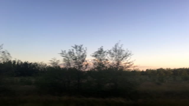 pampas landscape - moving past stock videos & royalty-free footage