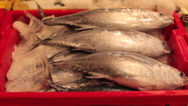 Pan across a box of fish at a fish market in Ho Chi Minh City.