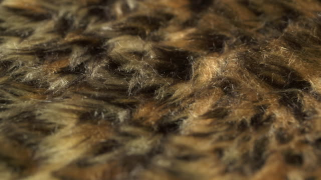 Pan across a piece of fake fur.