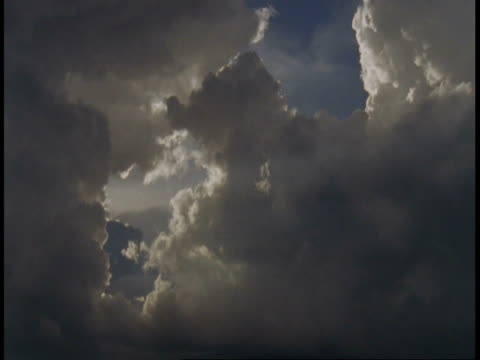 ms pan across blue sky with clouds, bandhavgarh national park, india - national icon stock videos & royalty-free footage
