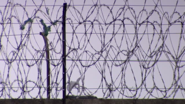 pan across dense razor wire on a fence. - barbed wire stock videos & royalty-free footage