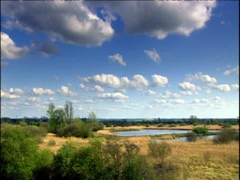 Pan across fenland under blue sky Cambridgeshire