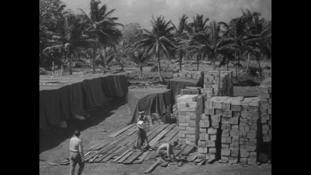 pan across storage yard full of crates of cigarettes; line of palm trees stands in background / two close ups of crates of cigarettes / note: exact... - guam stock videos & royalty-free footage