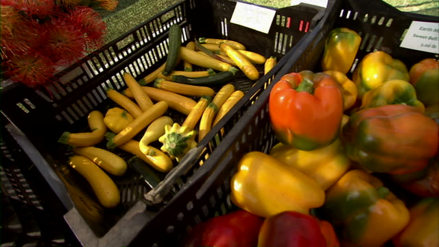 pan across three different kinds of vegetables for sale. - isole del pacifico video stock e b–roll