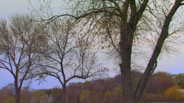 pan across to windmill and top of a gazebo - gazebo stock videos & royalty-free footage