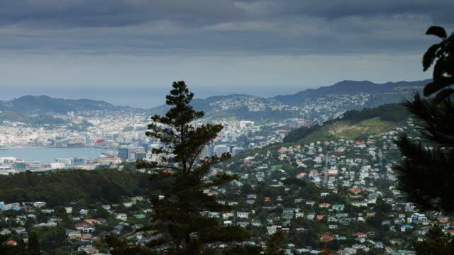 Pan Across Wellington, New Zealand Harbour