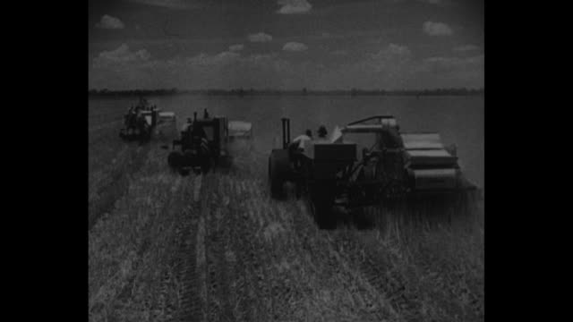 pan across wheat field in canada / two shots of farmers driving harvesters harvesting wheat / four shots of men working on floor of grain exchange /... - manitoba stock videos & royalty-free footage