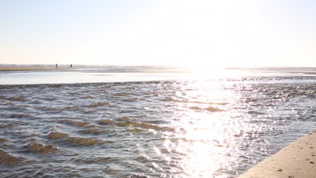 pan along tidal stream out to ocean at sunrise - vik vatten bildbanksvideor och videomaterial från bakom kulisserna