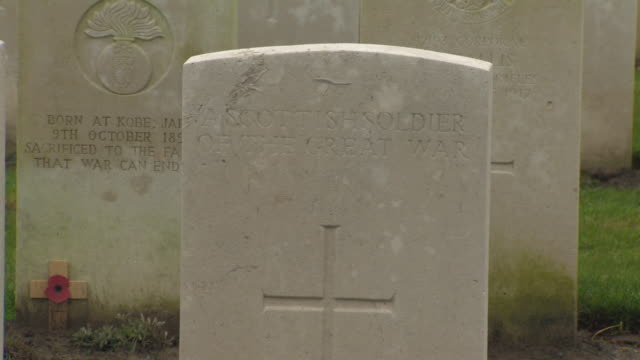 pan and tilt onto the grave of an unidentified scottish soldier of the first world war tyne cot cemetery belgium fkaz191x clip taken from programme... - cot stock videos & royalty-free footage