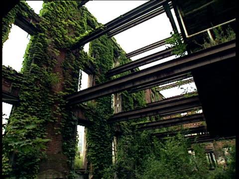 vídeos de stock, filmes e b-roll de pan around derelict building overgrown with plants bronx - trepadeira