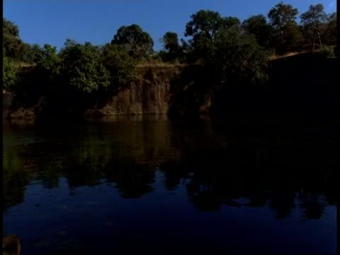 wa pan around lake in jungle, bandhavgarh national park, india - national icon stock videos & royalty-free footage