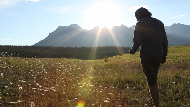 vídeos de stock e filmes b-roll de pan as teen boy walks thru meadow of flowers, texting/phoning - só um menino adolescente