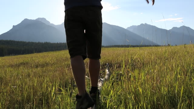 pan as teenage boy balances on log in mtn meadow - one teenage boy only stock videos & royalty-free footage