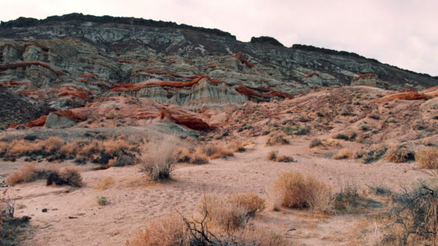 pan: bush and rock formations in the desert (shot on red) - red rocks stock videos and b-roll footage