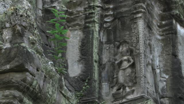 Pan down beautiful stone carvings adorning the walls at the Bayon temple in Angkor, Cambodia.