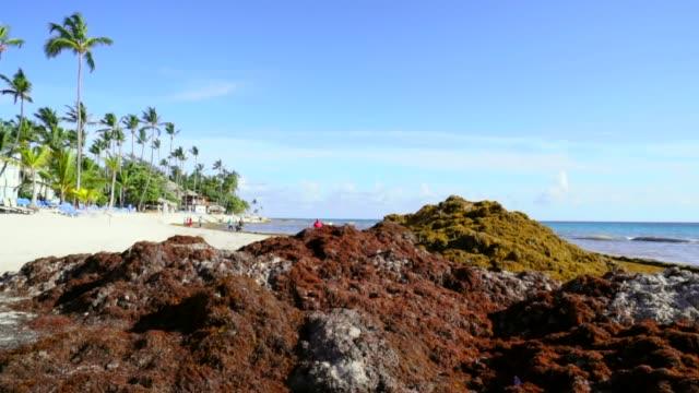 vídeos y material grabado en eventos de stock de pan down of piles of differently colored sand - hispaniola