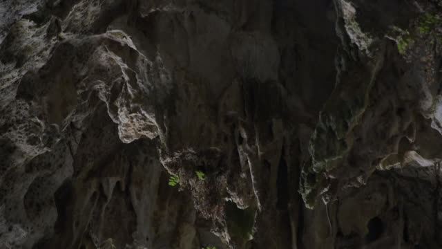 pan down the roof of gorham's cave at the base of the rock of gibraltar. - シダ点の映像素材/bロール