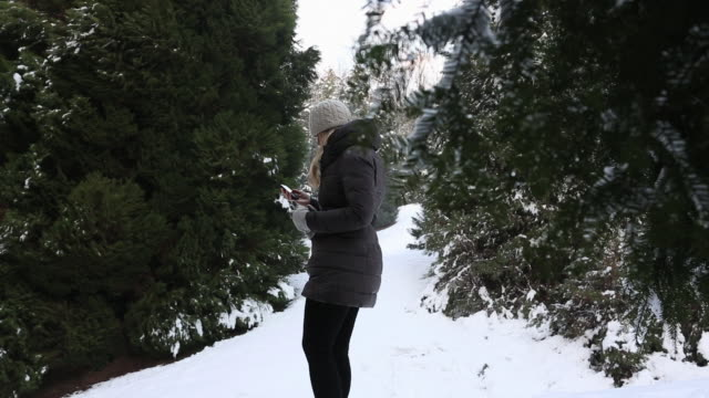 pan down thru tree branch to woman tetxting, man joins - mitten stock videos and b-roll footage