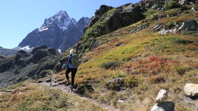 vídeos de stock, filmes e b-roll de pan down to hiker following trail, takes picture - equipamento fotográfico