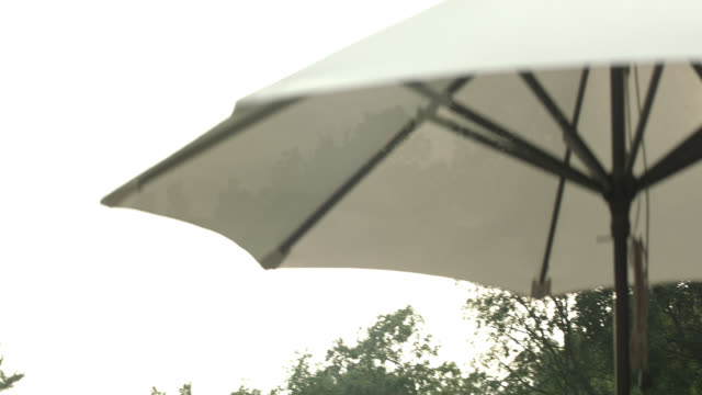 79102bbf94 80 Top Garden Umbrella Video Clips and Footage - Getty Images