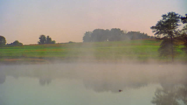 pan foggy pond and rural landscape / greenville, south carolina - tidal pool stock videos and b-roll footage