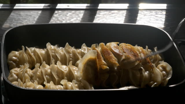 Pan fried Chinese dumpling
