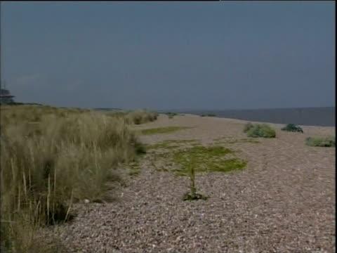 vídeos de stock, filmes e b-roll de pan from pebble beach to nuclear power stations sizewell - vazante