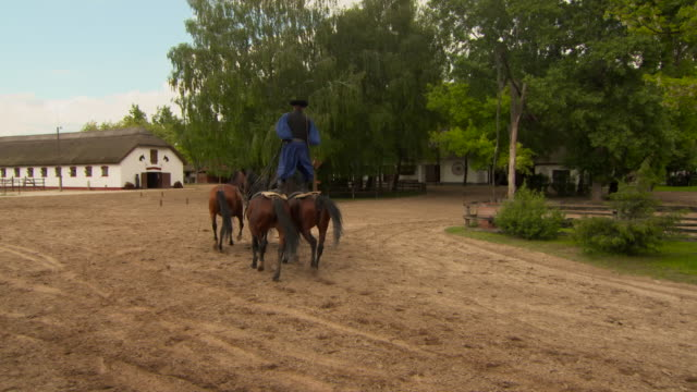 Pan: Hungarian Man Stands on Two Horses While Leading Team of Three