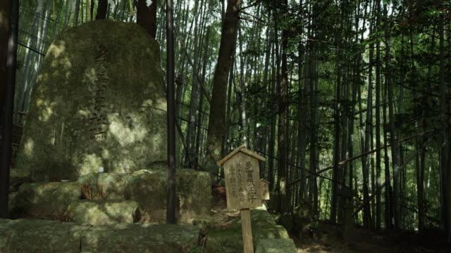 vídeos de stock, filmes e b-roll de pan left, ancient stones in kumano kodo - santuário