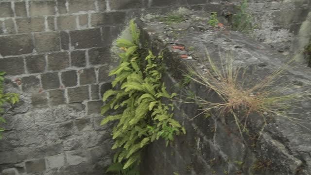 pan left dungeon santiago fort manila metro manila philippines  - dungeon stock videos & royalty-free footage