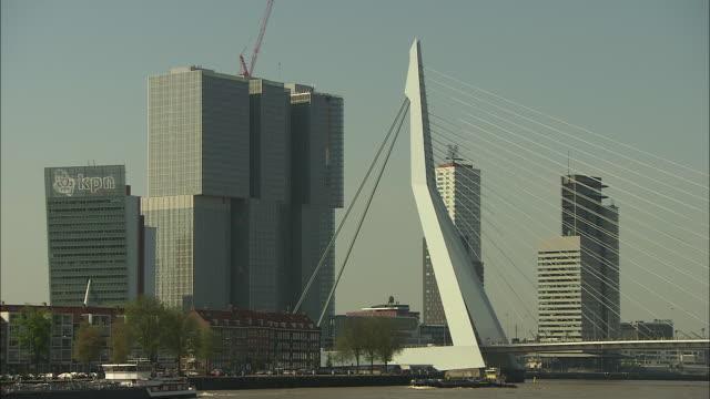pan left erasmus bridge on meuse in rotterdam - cable stayed bridge stock videos & royalty-free footage