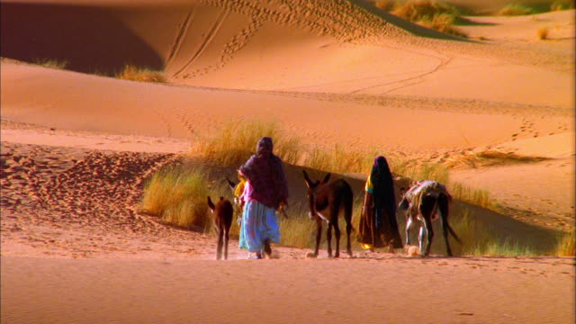 vidéos et rushes de pan left following women walking with donkeys in desert, morocco available in hd. - baudet