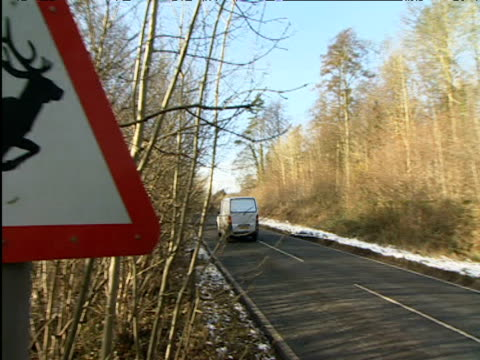 pan left from road to road sign warning presence of deer - road warning sign stock videos & royalty-free footage