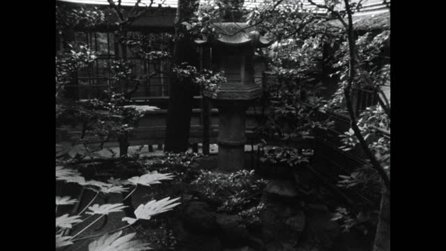 pan left of small domestic garden in japan with lantern; 1964 - bamboo plant stock videos & royalty-free footage