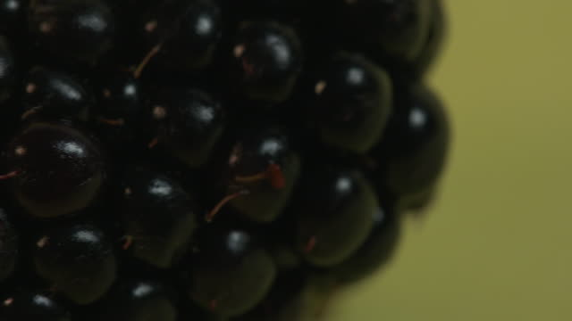 pan left onto and then off a blackberry against a plain yellow background. - ascorbic acid stock videos & royalty-free footage