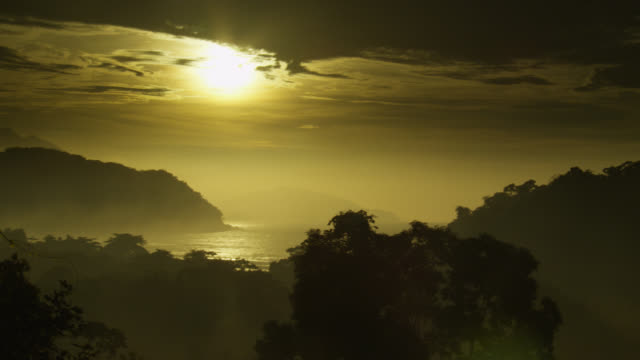 Pan left over Atlantic forest at sunrise.