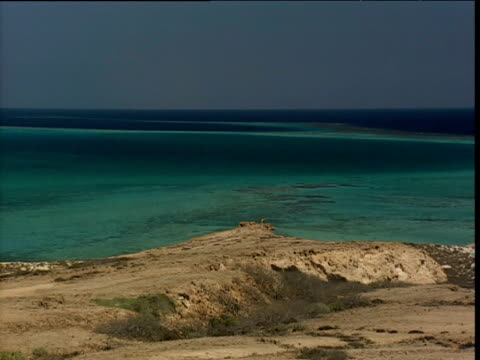pan left over red sea - red sea stock videos & royalty-free footage