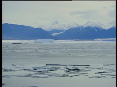 Pan left past snow covered mountain ranges and ice floes in Pond Inlet