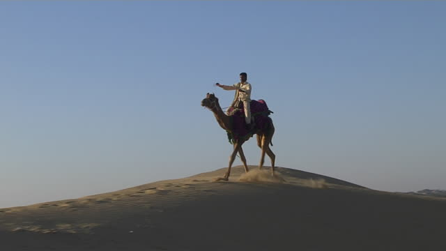 Pan Left Shot Desert Camel Ride Jodhpur Rajasthan India