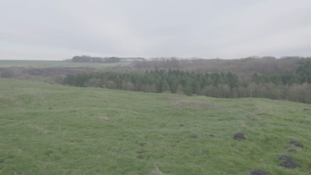 pan left shot of the landscape in wharram percy - evergreen stock videos & royalty-free footage