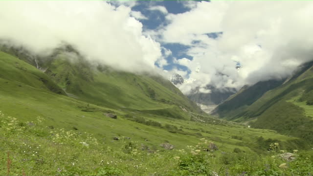 pan left shot valley of flowers cloudy snow capped mountains uttarakhand - valley stock videos & royalty-free footage